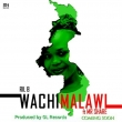 Wachi Malawi ft Mr Share
