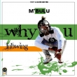 Why U Lubwing (Prod by Quakebeats)