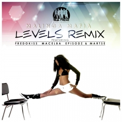 Levels Remix