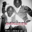 Pick 2 and Nock-Zi